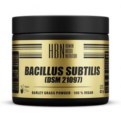 HBN Bacillus Subtilis (DSM 21097) - 60 Cápsulas