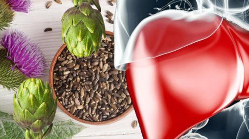 Protege tu hígado sabiamente
