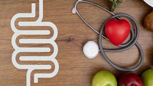 Tu dieta y tu sistema digestivo