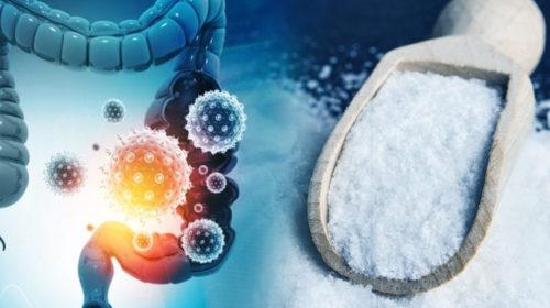 Sulfato de Magnesio, Mejor Digestión y Más