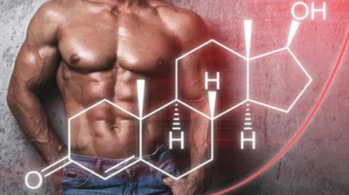 Aumenta la testosterona perdiendo grasa