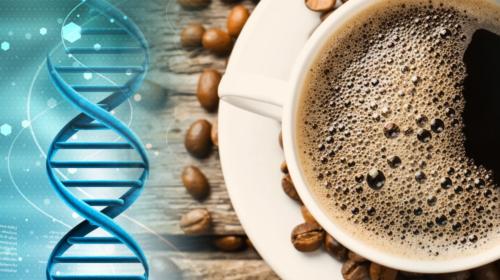 El café, ¿energético y más?