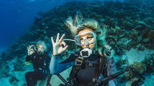 Aventura submarina, ¿te gusta?