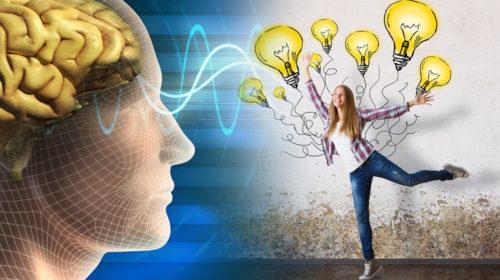 Estimula tu cerebro, Estimula tu vida
