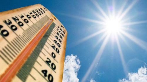 ¿Cómo superar una ola de calor?