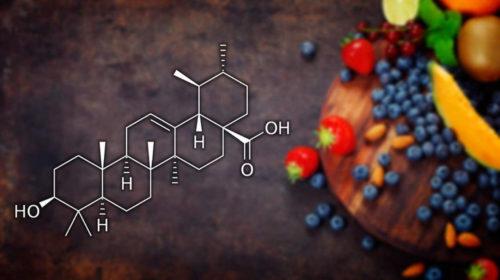 Acido Ursólico: ¿lo usas habitualmente?